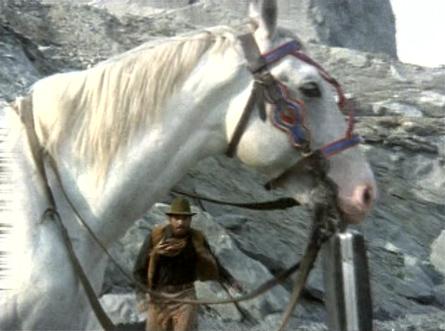 jugnu_horse.jpg