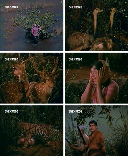 shikari_jungleadventure