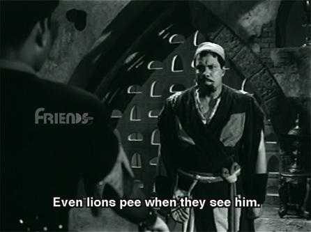 shabnam_lions