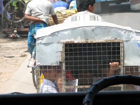 india_schoolbus1